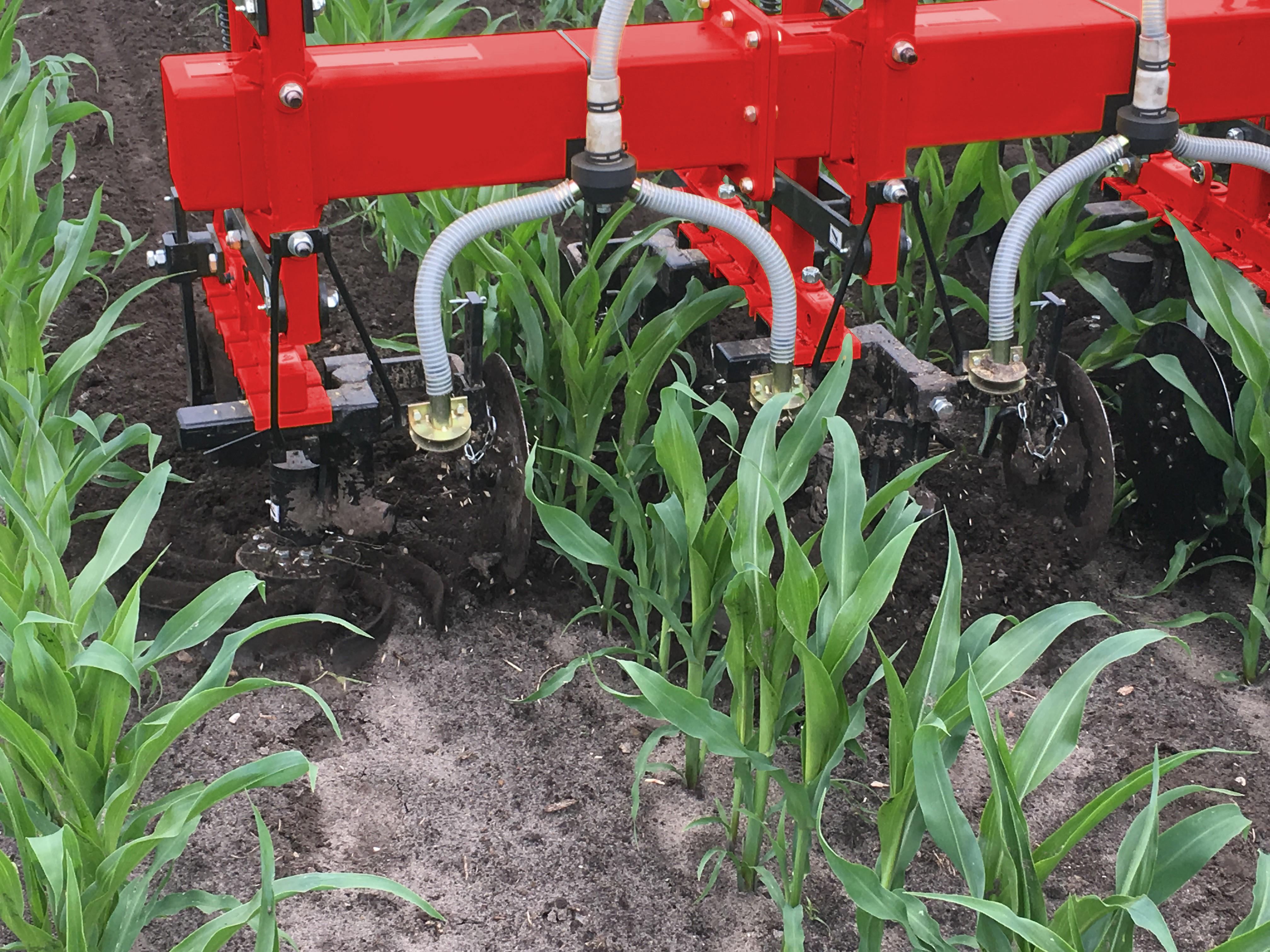Evers schoffel-bemester voor bemesten en schoffelen van maisland in één werkgang, met zaaimachine voor onderzaai in mais