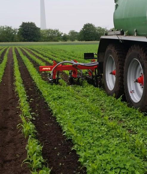 Schoffelen en bemesten van maisland in één werkgang