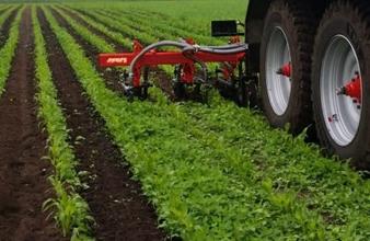 Schoffelbemester boor het bemesten en schoffelen van maisland in één werkgang